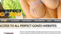 Perfectgonzo best porn paid website