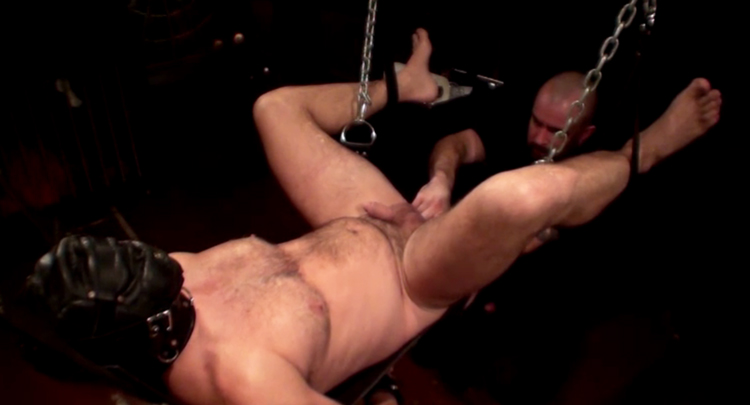 Greatest premium porn site for BDSM gay movies