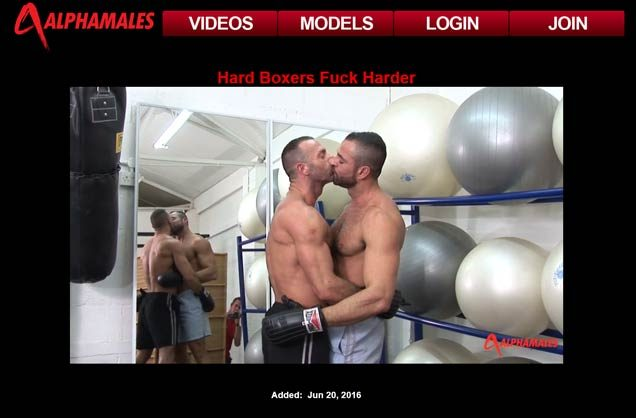 My favorite pay adult site for hot gay males