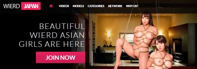Top premium sex website for the fans of BDSM asian porn movies