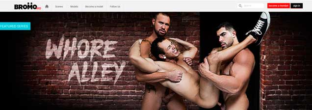 Good premium adult site that brings you hard gay porn contents