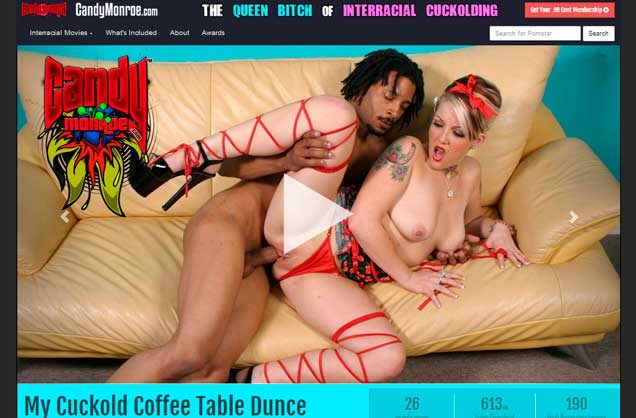 Nice premium porn website featuring interracial raw sex stuff