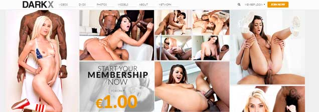 Greatest paid sex website if you are a lover of interracial porn material